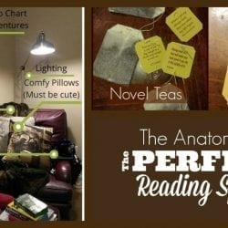 The Anatomy of the Perfect Reading Space