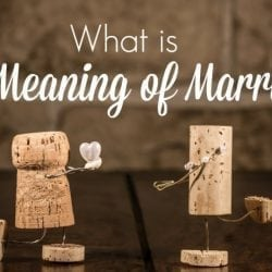 What is the Meaning of Marriage?
